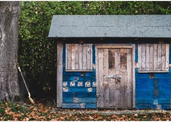 Shed Removal Services